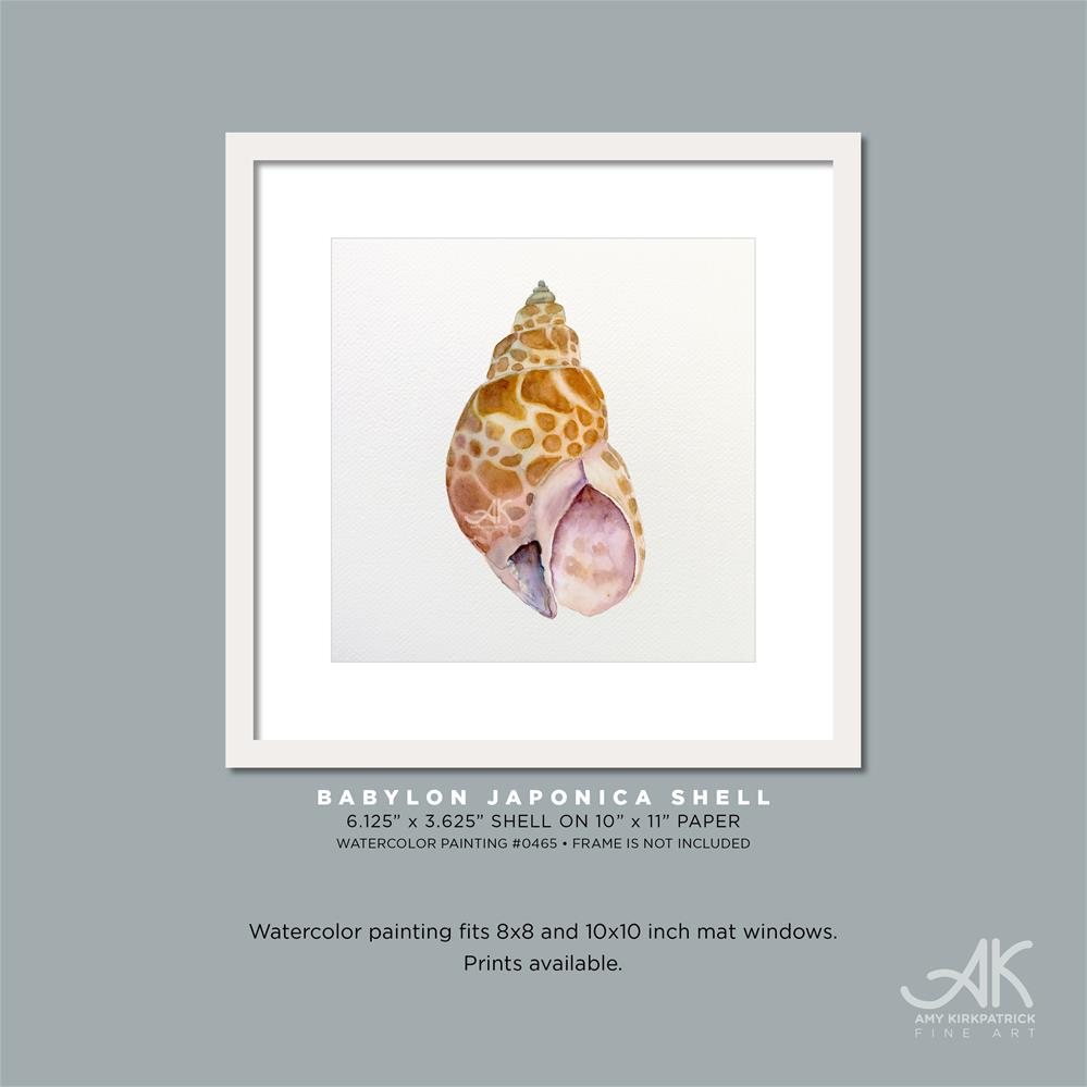 """BABYLON JAPONICA SHELL #0465"" original fine art by Amy Kirkpatrick"