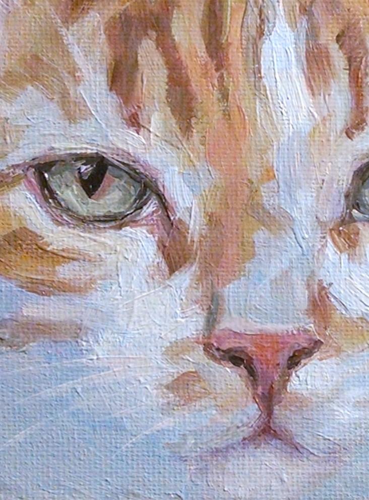 """Pale Orange Cat"" original fine art by J. Dunster"