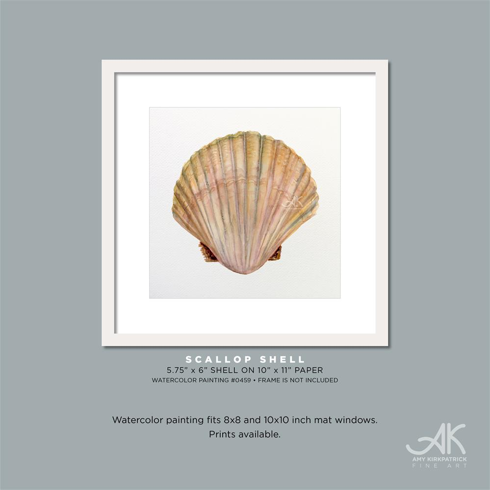 """SCALLOP SHELL #0459"" original fine art by Amy Kirkpatrick"