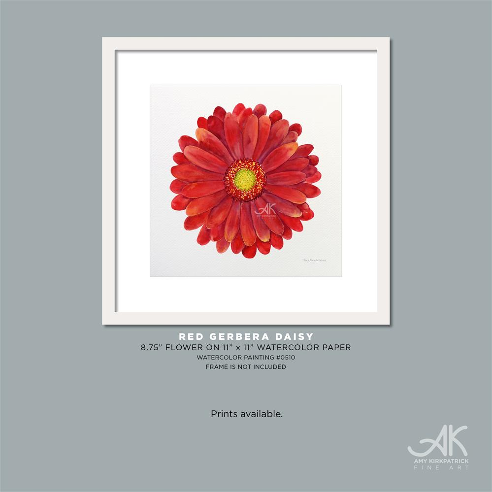 """RED GERBERA DAISY #0510"" original fine art by Amy Kirkpatrick"
