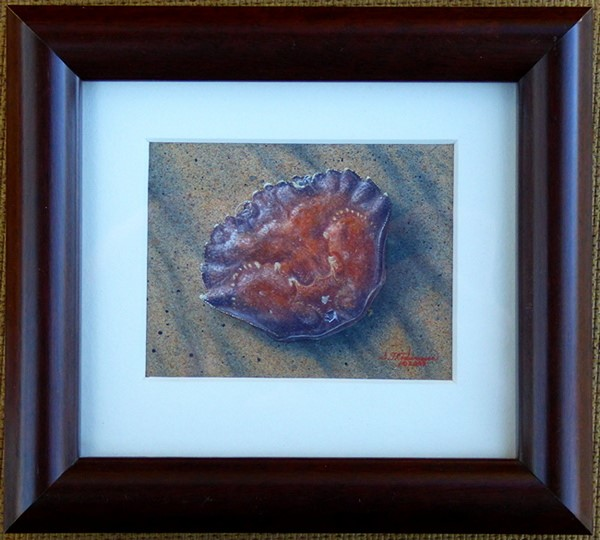 """""Crabshell on the Beach"""" original fine art by Steven Thor Johanneson"