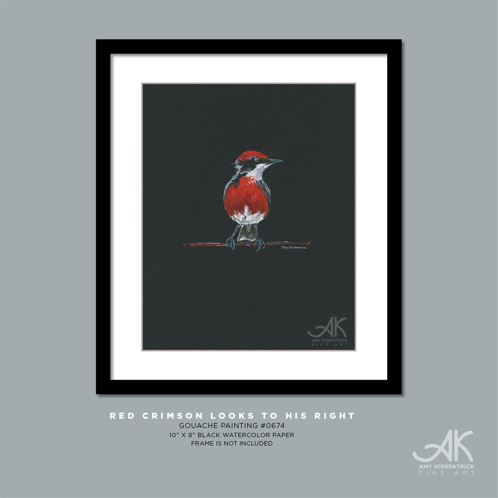 """RED CRIMSON LOOKS TO HIS LEFT #0674"" original fine art by Amy Kirkpatrick"