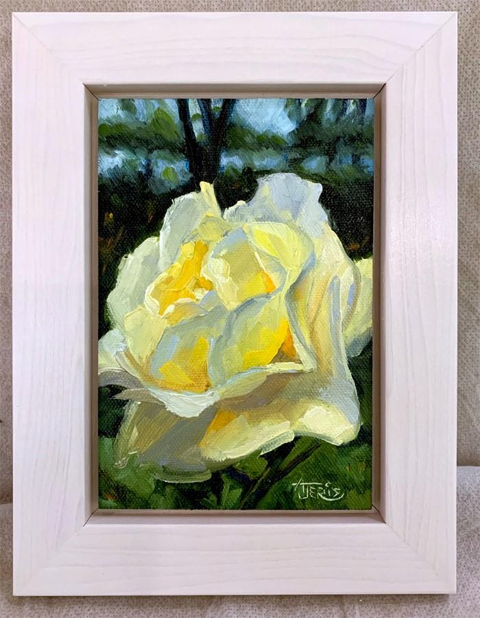 """Delicate As A Rose"" original fine art by Andrea Jeris"