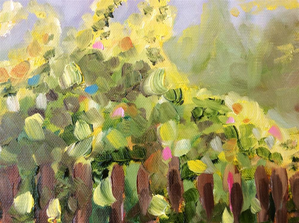 """Misty Morning Vineyard"" original fine art by Molly Rohrscheib Hathaway"