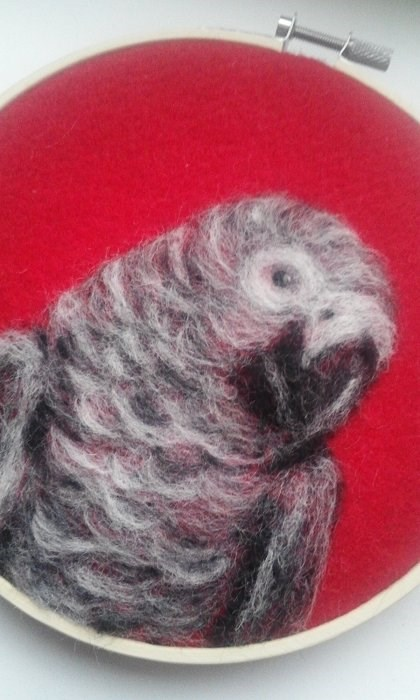 """African Grey Parrot"" original fine art by Camille Morgan"