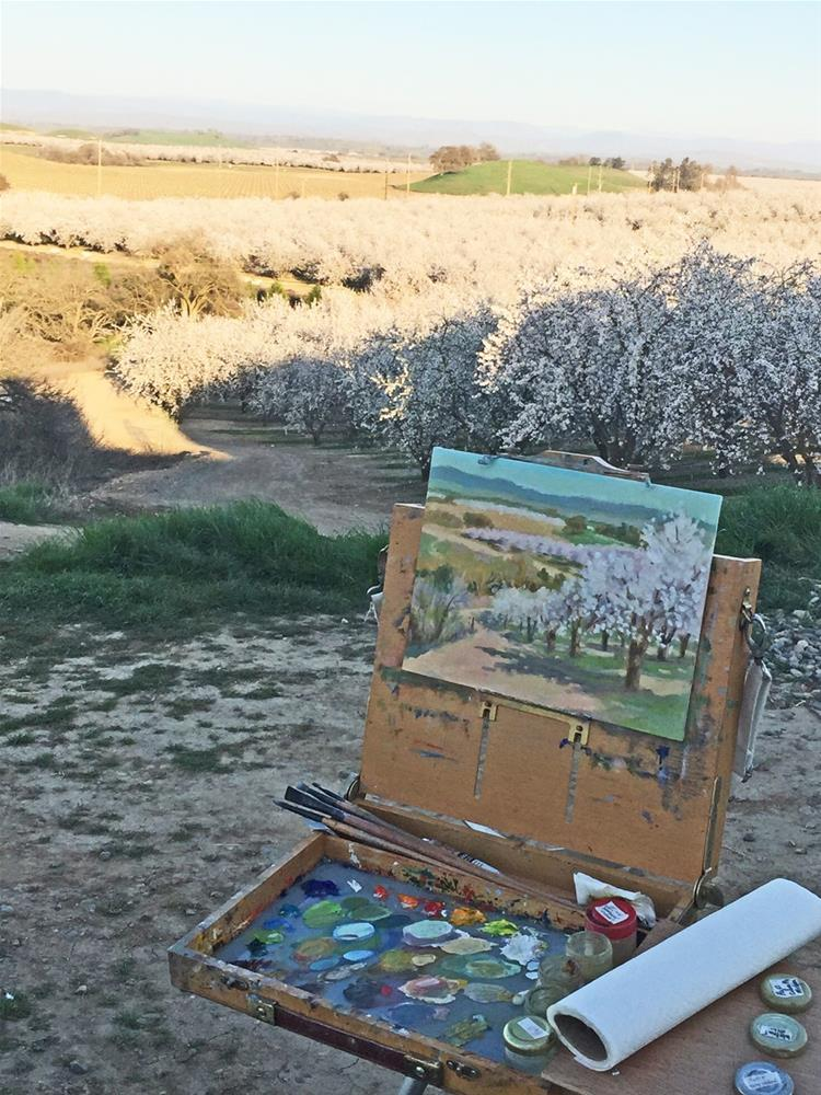 """Acres and Acres of Blooming Almonds"" original fine art by Rhett Regina Owings"