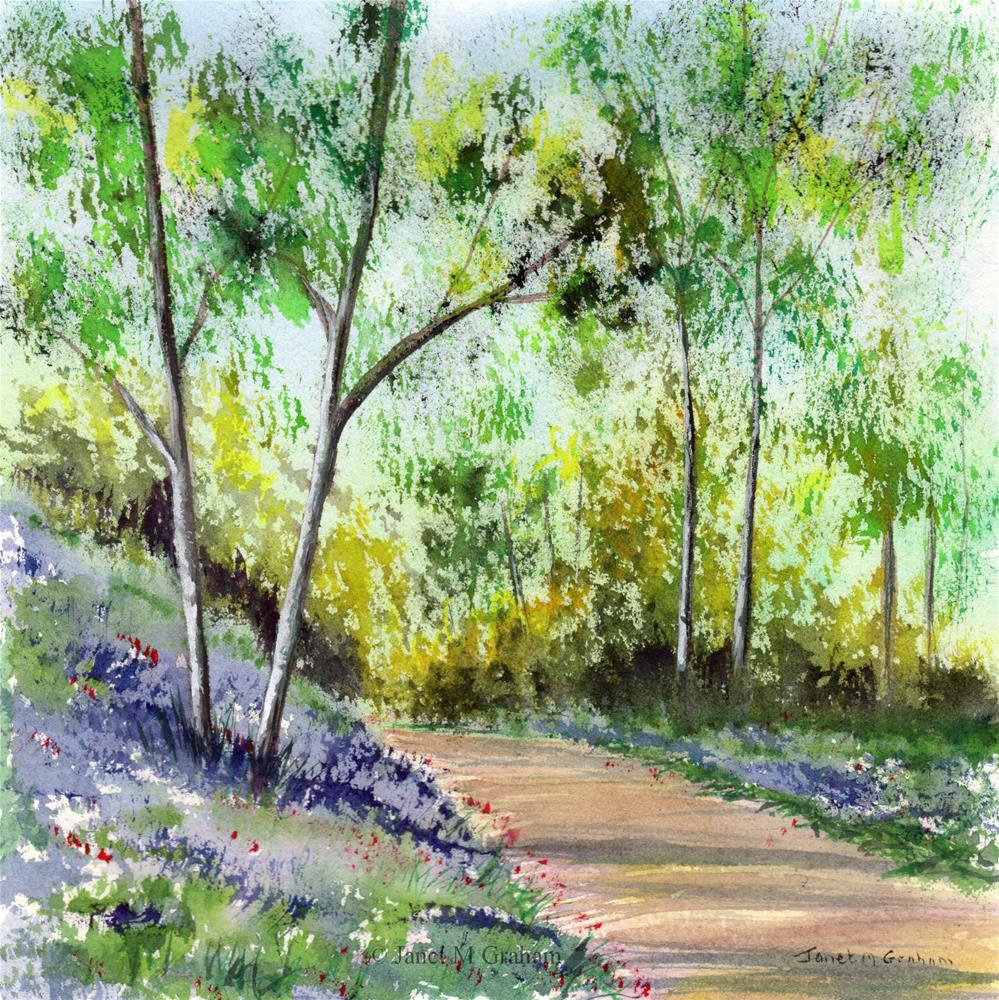 """Bluebell Woods 4"" original fine art by Janet Graham"