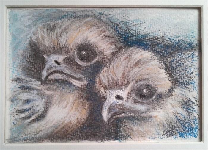 """Peregrine Chicks"" original fine art by Camille Morgan"
