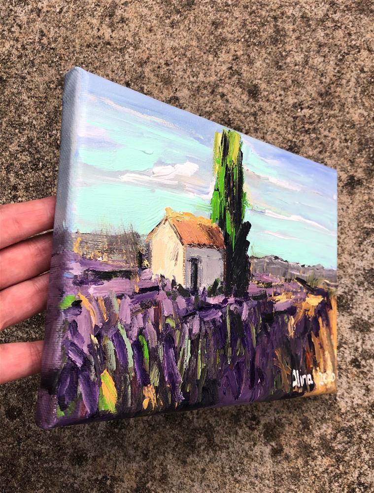 """""""Provence Lavender Field"""" original fine art by Alina Vidulescu"""