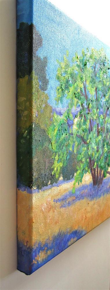 """Cuesta Park Annex"" original fine art by Patricia Musgrave"