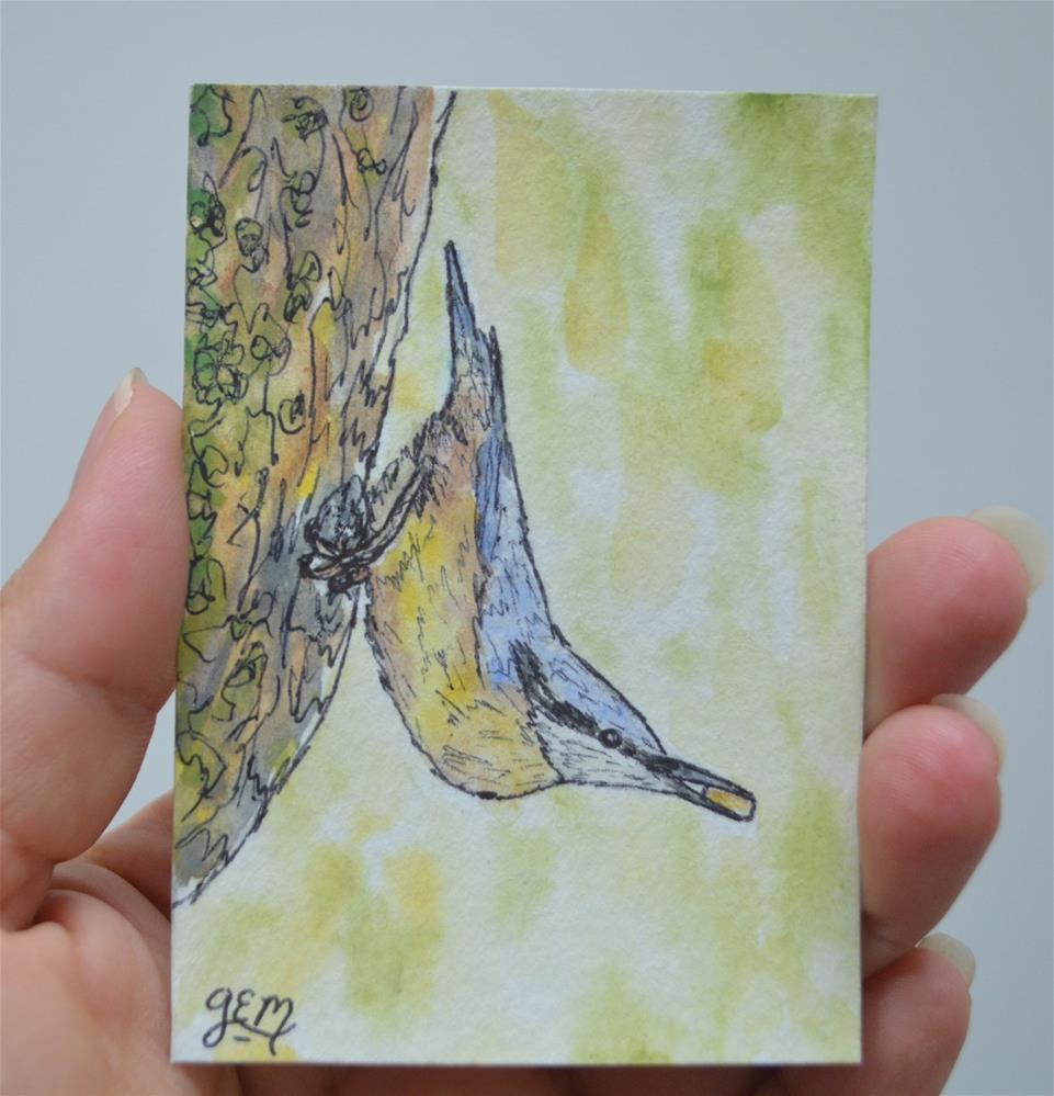 """Watercolor Nuthatch"" original fine art by Gloria Ester"
