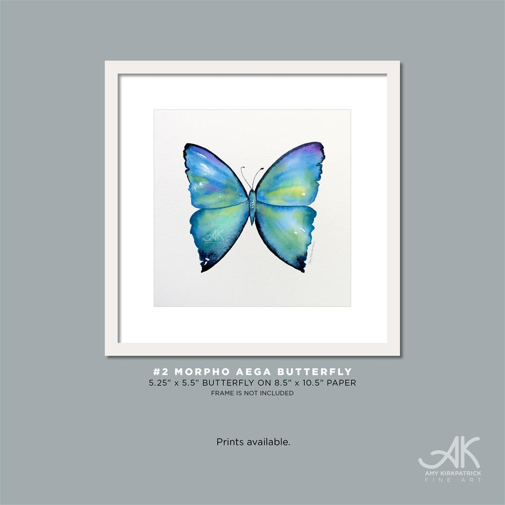 """#2 Morpho Aega Butterfly #0427"" original fine art by Amy Kirkpatrick"