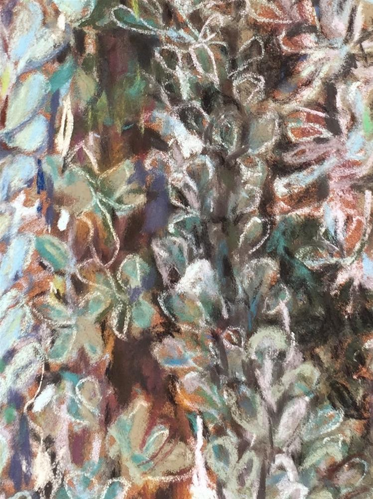 """Ocotillo"" original fine art by Jean Krueger"