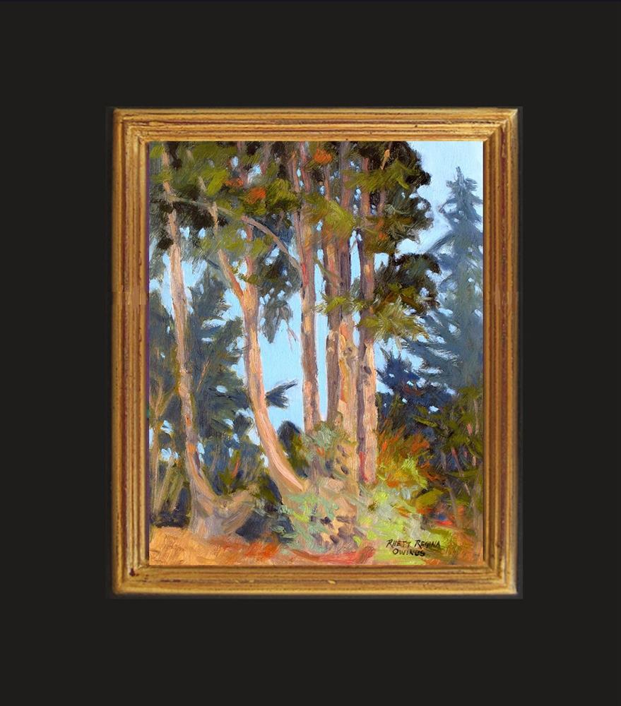 """Eucalyptus Trees"" original fine art by Rhett Regina Owings"