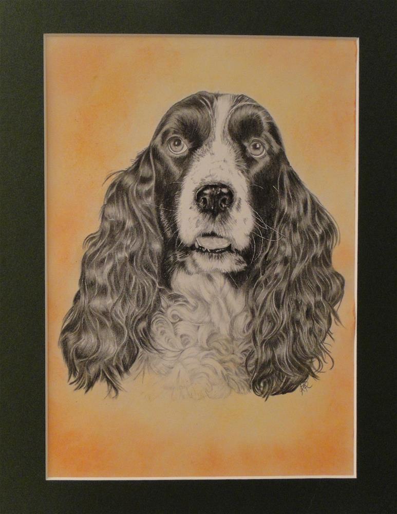 """""""Spaniel"""" original fine art by Karen Robinson"""