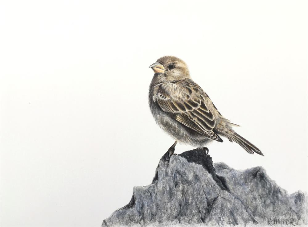 """""""Sparrow """" original fine art by Renay Shaffer"""