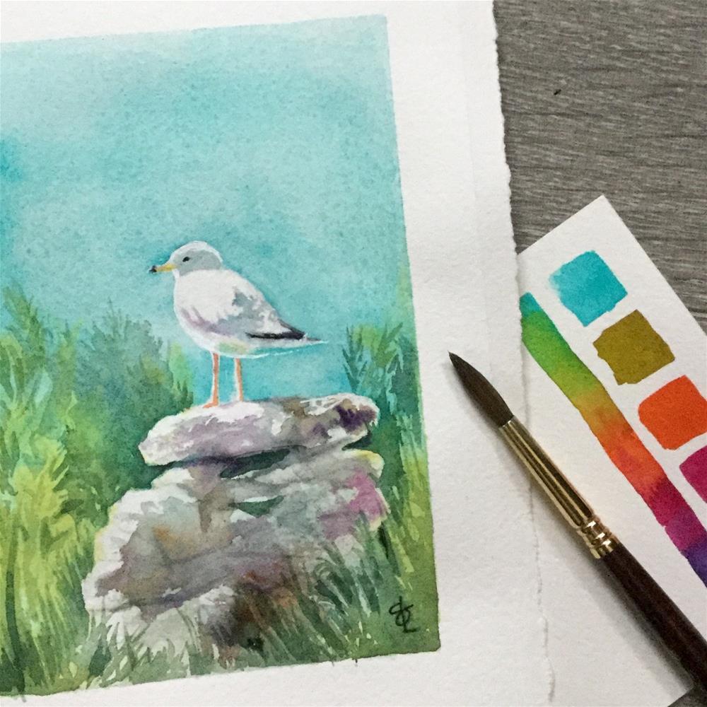"""Gull On The Rocks"" original fine art by Christy Obalek"