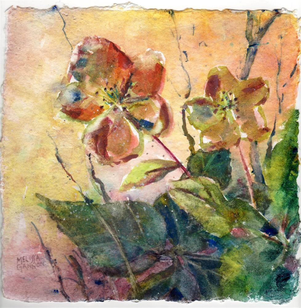 """Hellebore Dreams"" original fine art by Melissa Gannon"