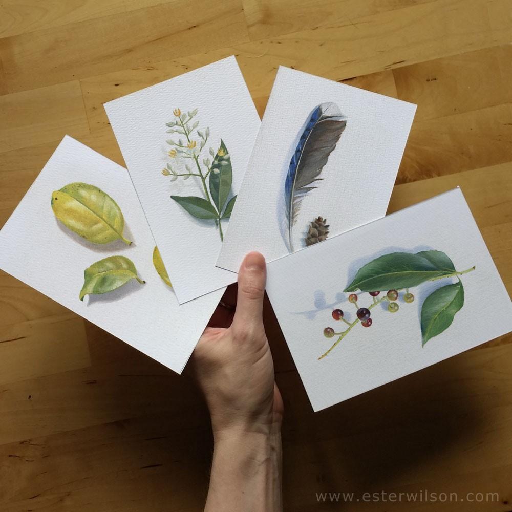 """Sacred Bamboo"" original fine art by Ester Wilson"