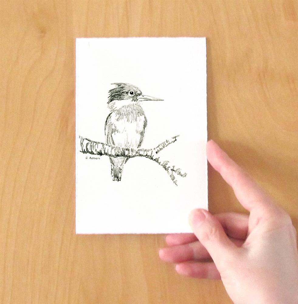 """Kingfisher Sketch"" original fine art by Corinne Aelbers"