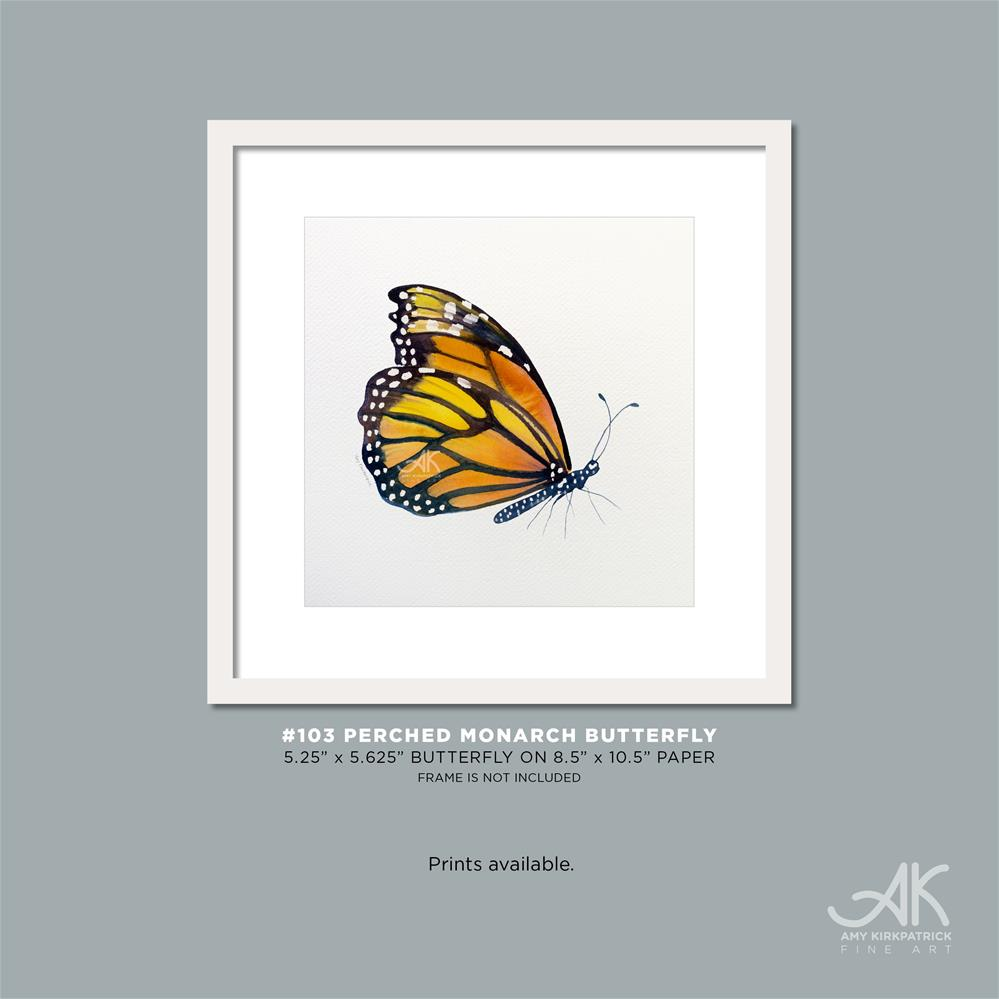 """#103 Perched Monarch Butterfly #0424"" original fine art by Amy Kirkpatrick"