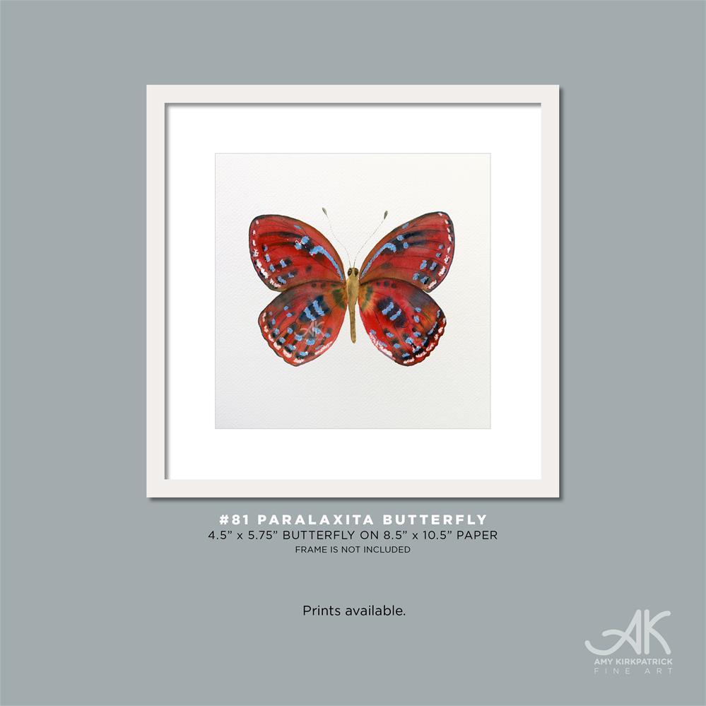 """#81 Paralaxita Butterfly #0391"" original fine art by Amy Kirkpatrick"