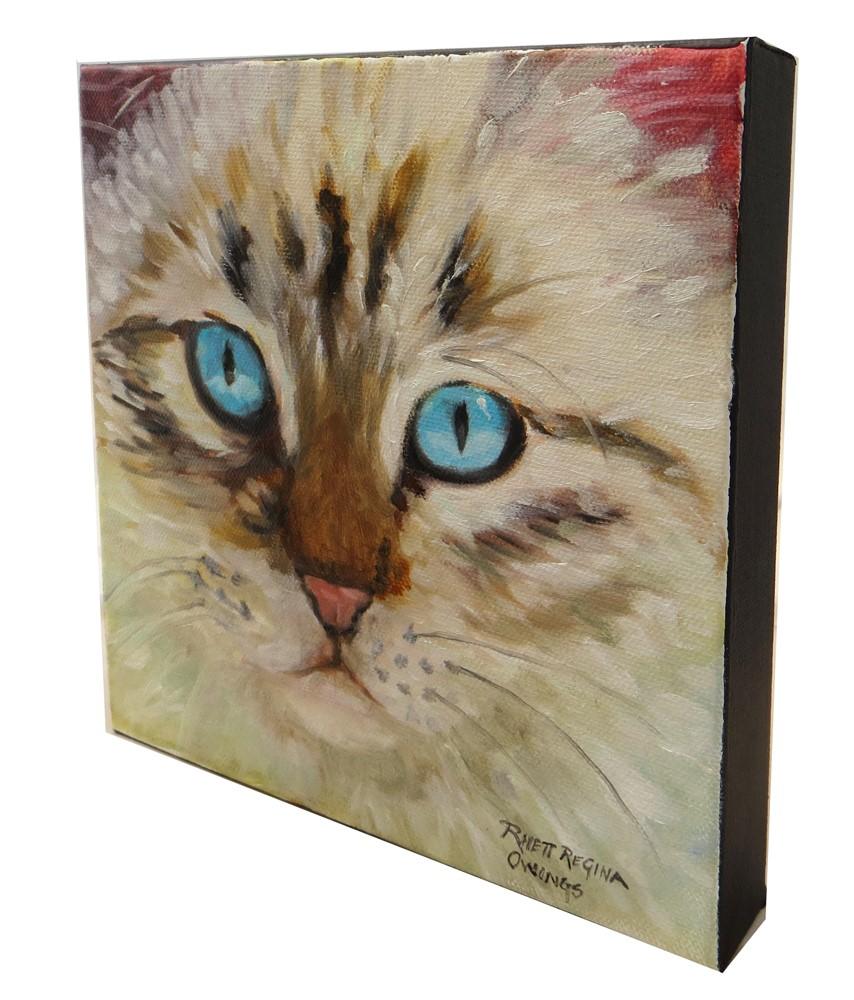 """""""Blue Eyed Kitten"""" original fine art by Rhett Regina Owings"""