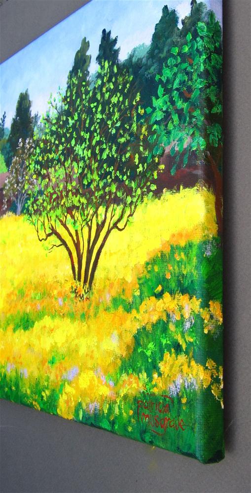 """Mustard Field"" original fine art by Patricia Musgrave"