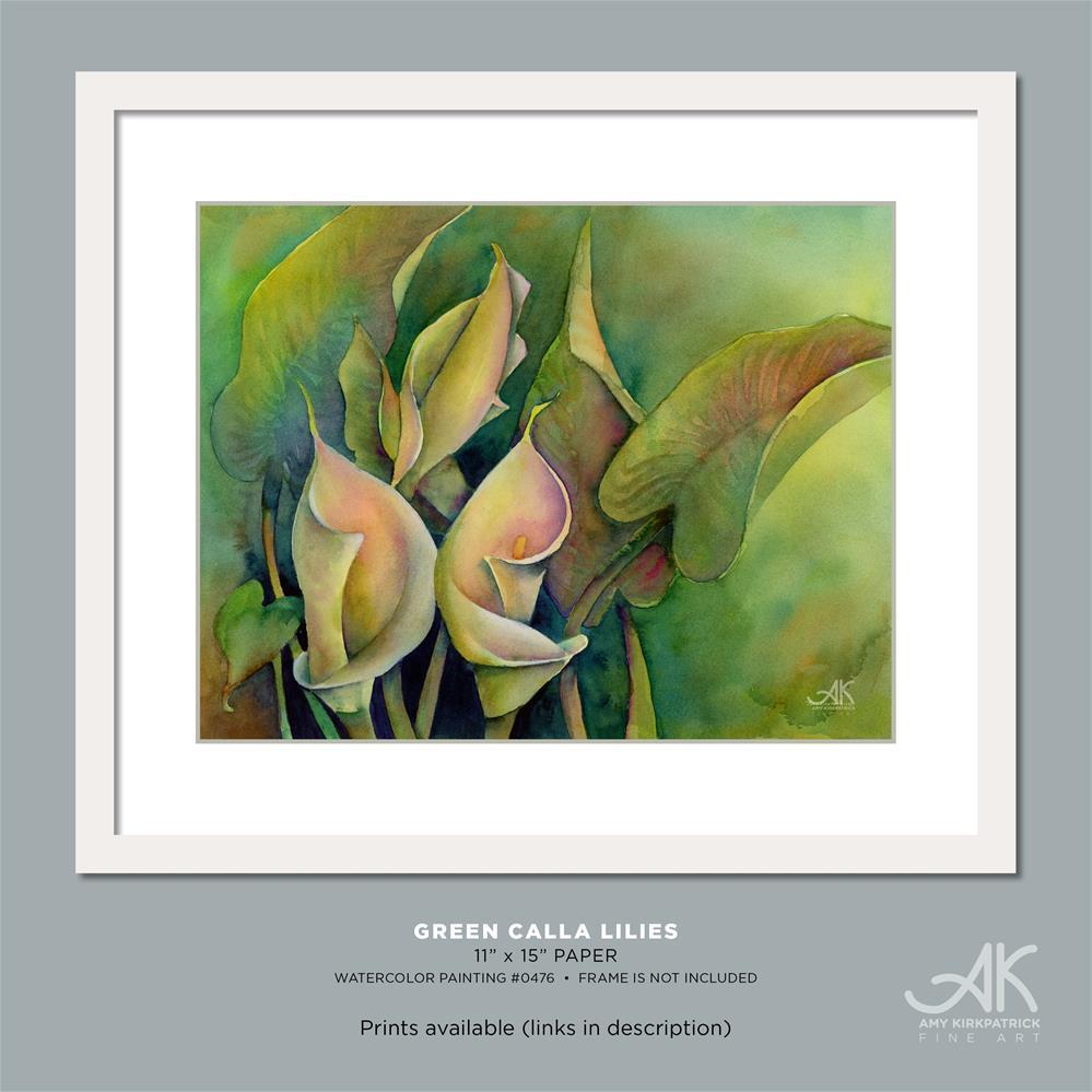 """GREEN CALLA LILIES #0476"" original fine art by Amy Kirkpatrick"