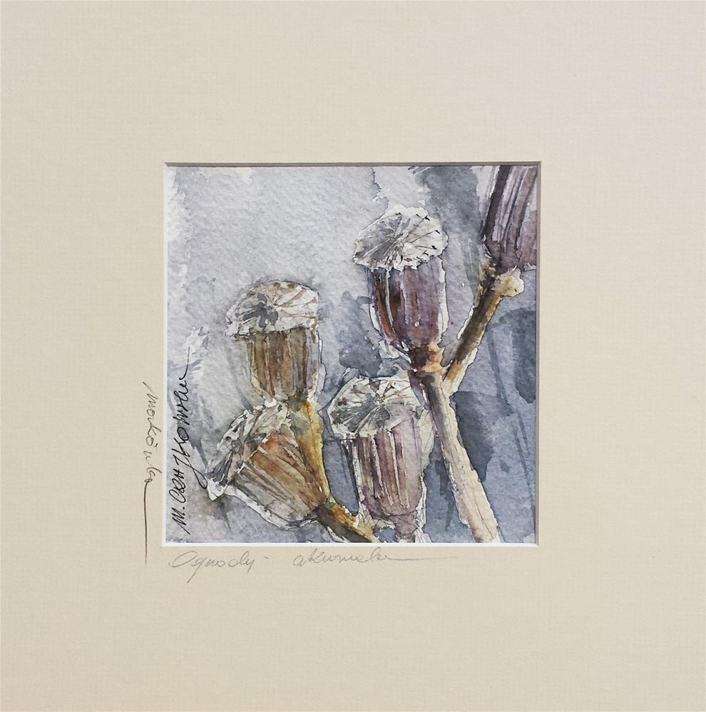 """""""Poppy 3"""" original fine art by Marlena Czajkowska"""