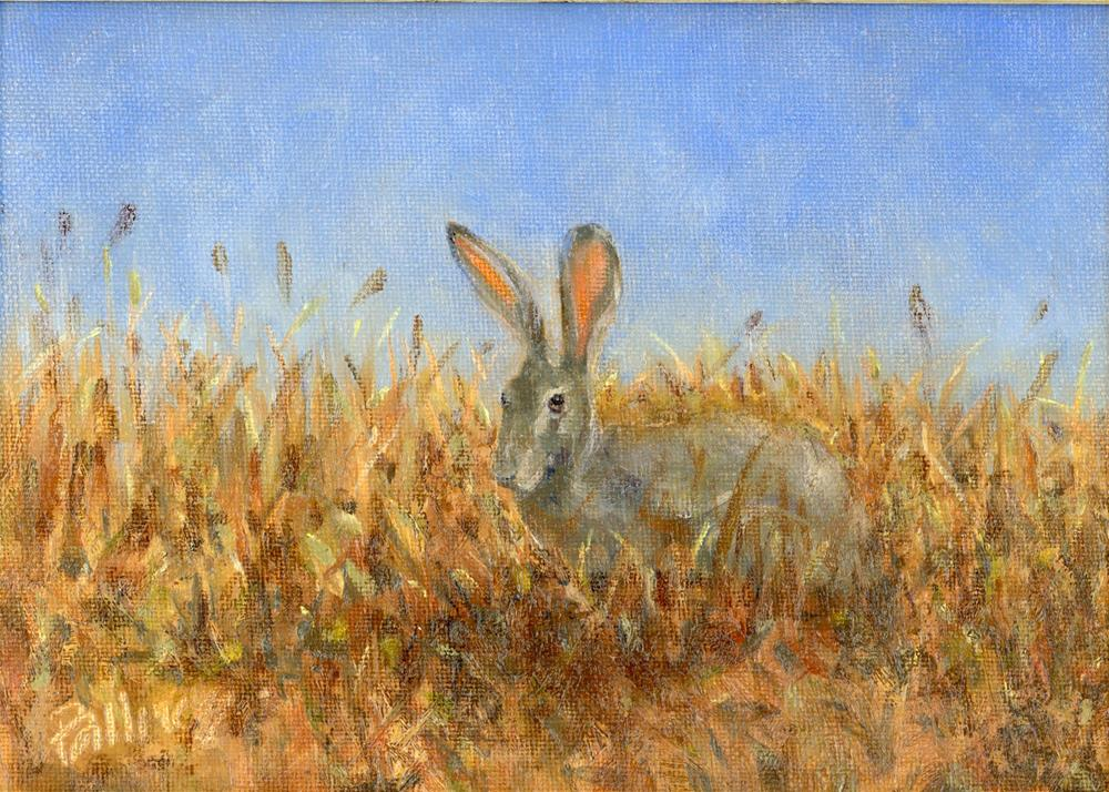 """""""Field Study VI"""" original fine art by Susanne Billings"""