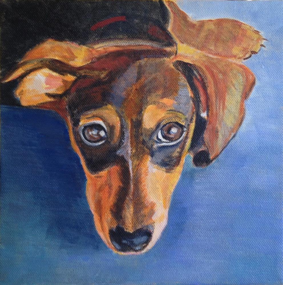 """ Tabby "" original fine art by Marietta Modl"