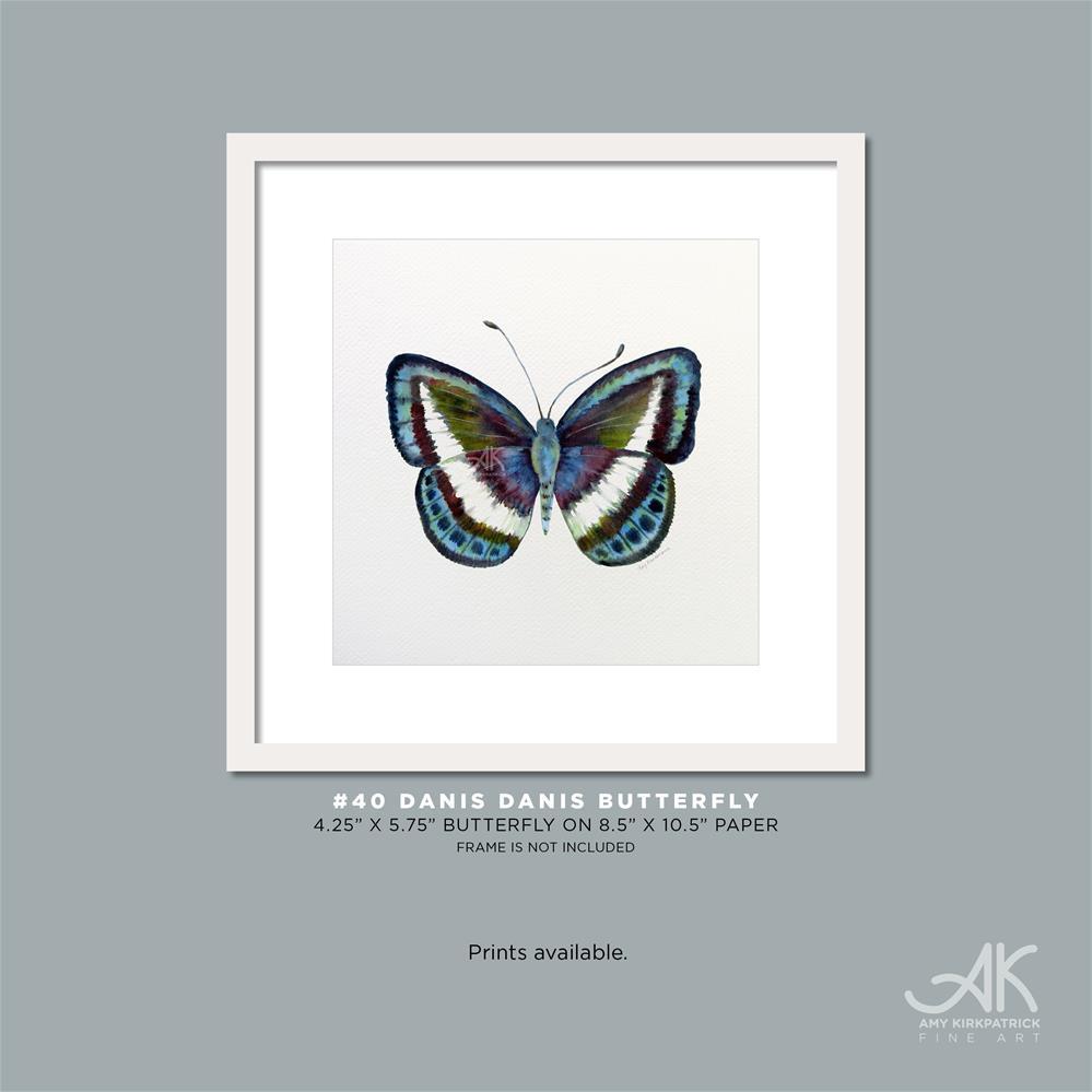 """""""#40 Danis Danis Butterfly #0349"""" original fine art by Amy Kirkpatrick"""