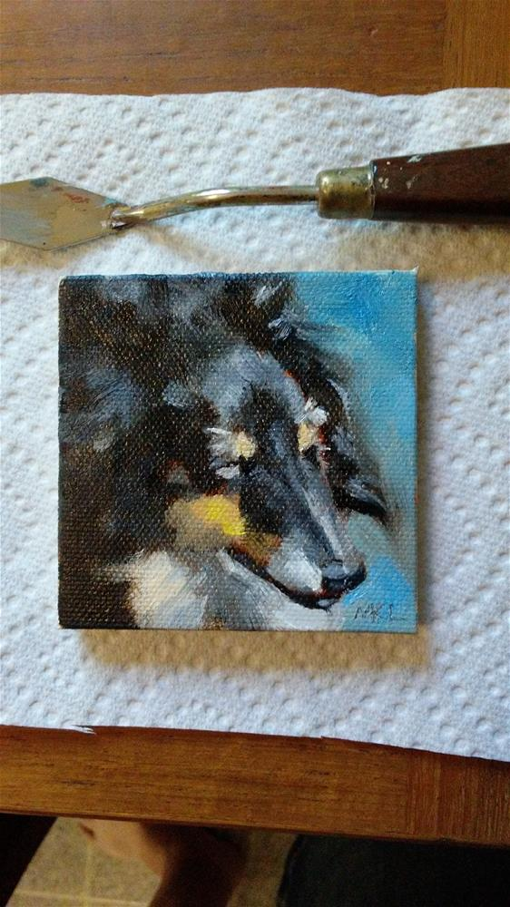 """Wise Collie"" original fine art by Marlene Lee"
