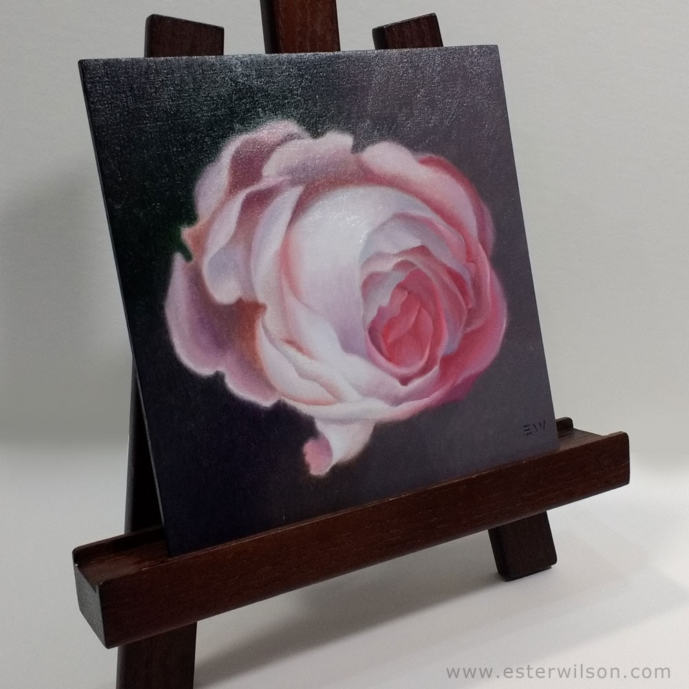 """Dutch Rose"" original fine art by Ester Wilson"