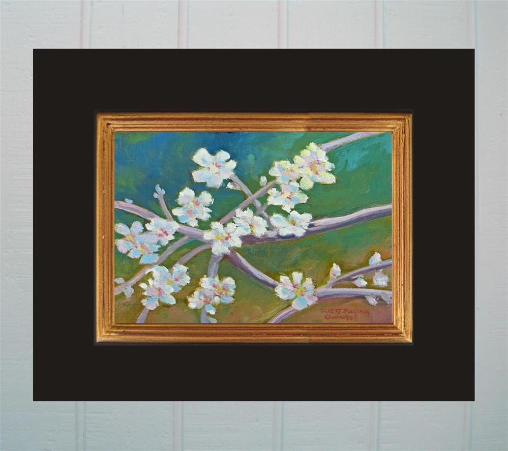 """""""Almond Blossom Spring"""" original fine art by Rhett Regina Owings"""