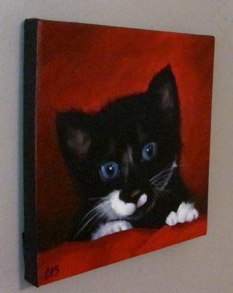 """""""Socks"""" original fine art by ~ces~ Christine E. S. Code"""