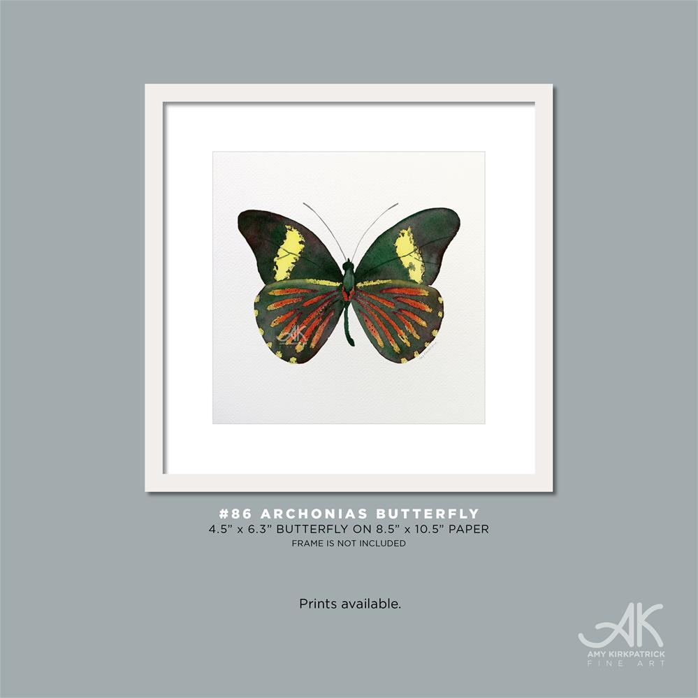 """#86 Archonias Butterfly #0396"" original fine art by Amy Kirkpatrick"