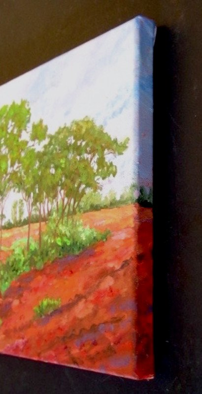 """""""Red Earth"""" original fine art by Patricia Musgrave"""