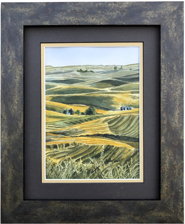 """Harvest Gold"" original fine art by Andy Sewell"