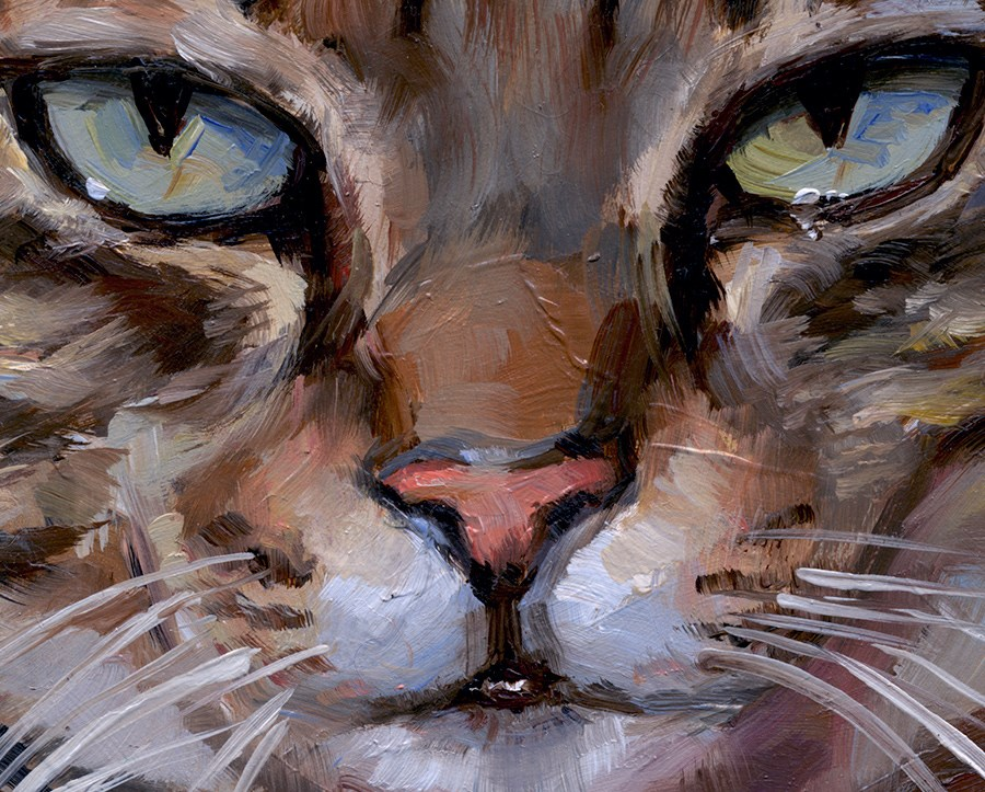 """Mug Shot Tabby"" original fine art by J. Dunster"