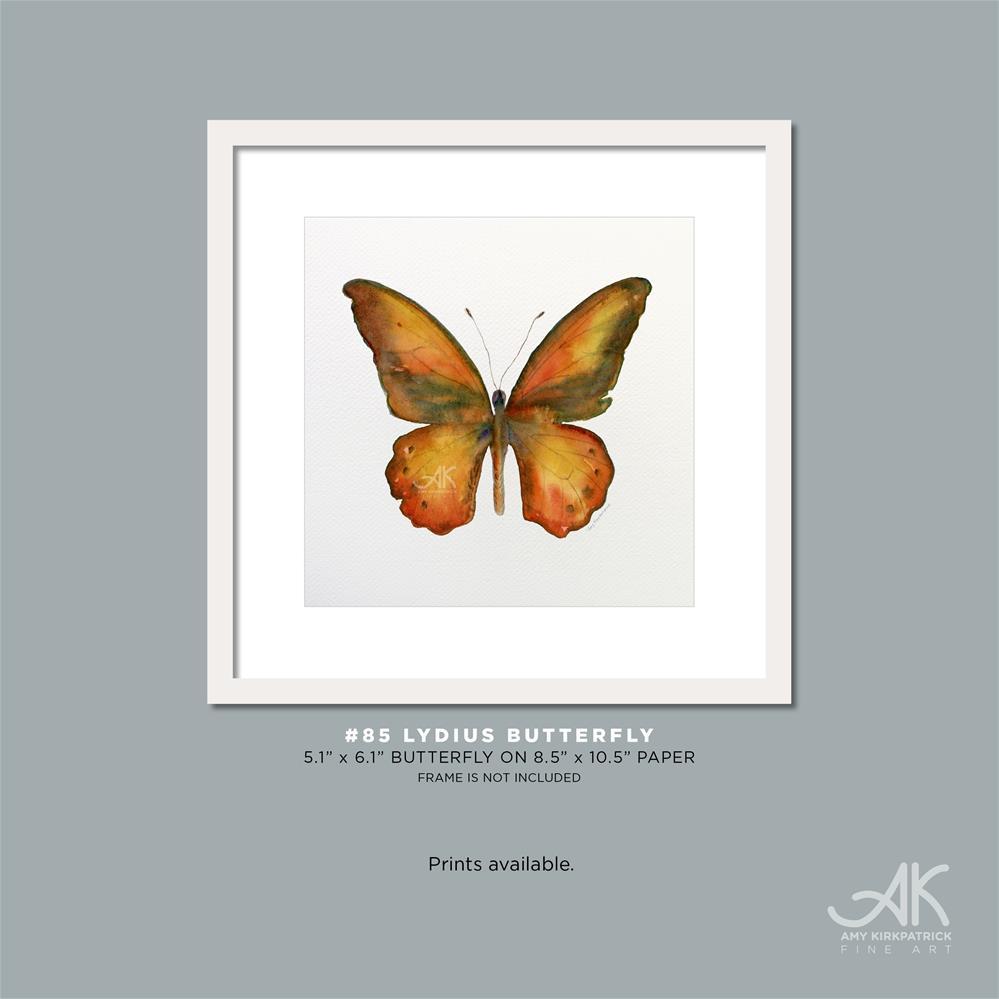 """#85 Lydius Butterfly #0395"" original fine art by Amy Kirkpatrick"