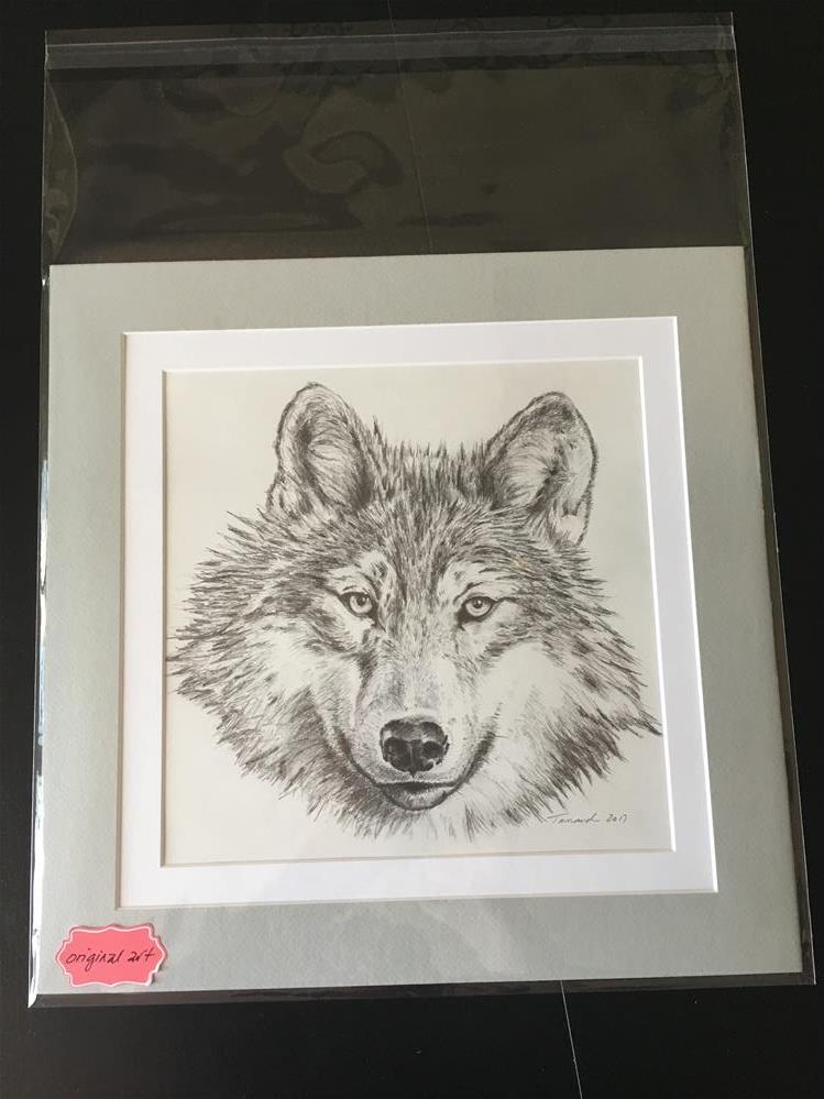 """Wolf"" original fine art by Tamanda Elia"