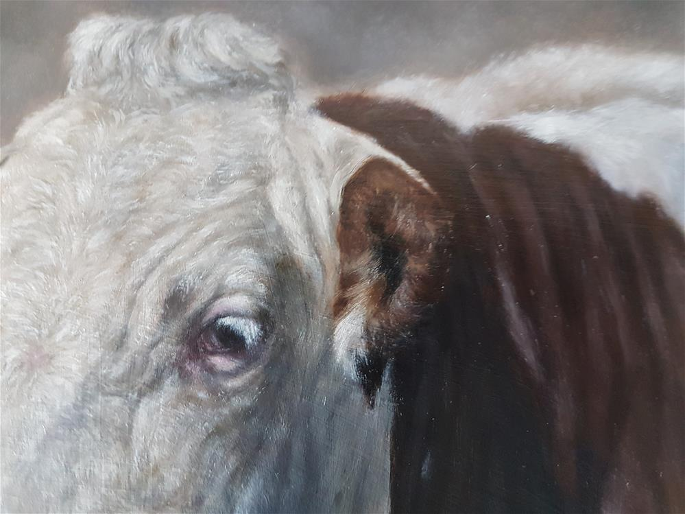 """Cow"" original fine art by Nikolina Primorac"