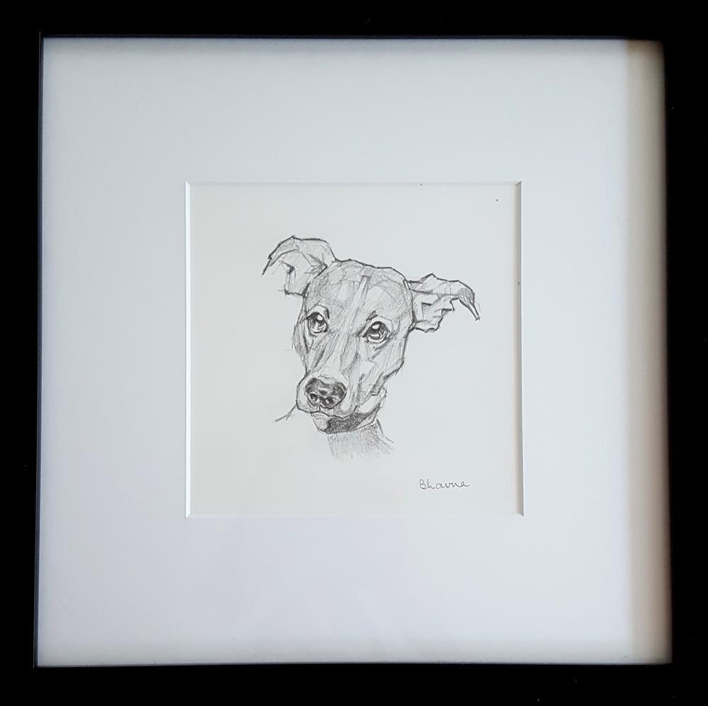 """Tim - Framed Dog Portrait"" original fine art by Bhavna Misra"