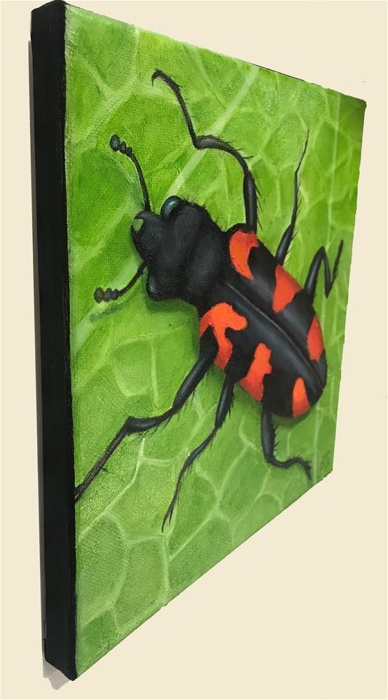"""Checkered Beetle"" original fine art by Joetta Currie"