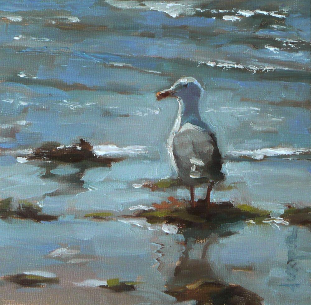 """""""Seagull"""" original fine art by Dana Cooper"""