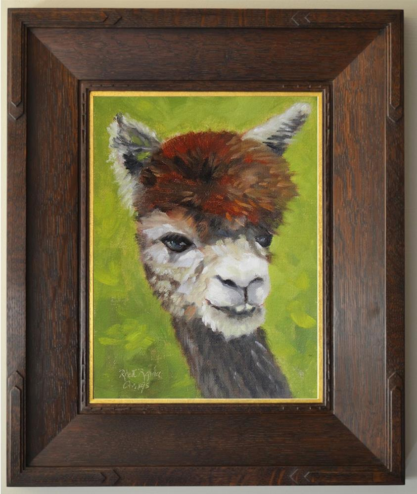 """Brown Alpaca Study"" original fine art by Rhett Regina Owings"