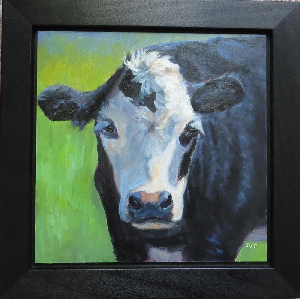 """Steer Clear"" original fine art by Sue van Tonningen"