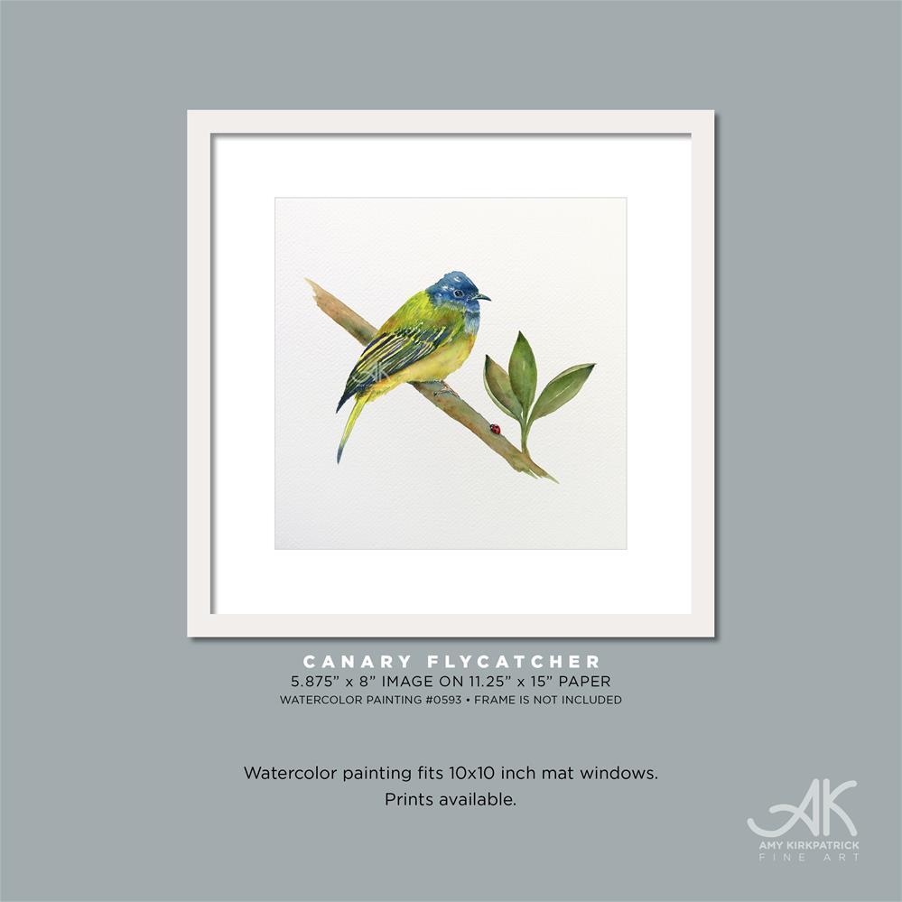 """""""CANARY FLYCATCHER #0593"""" original fine art by Amy Kirkpatrick"""